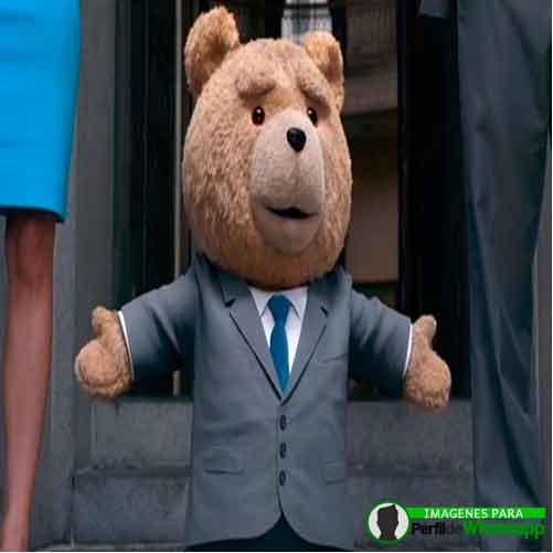 imágenes de TED el OSO (1)