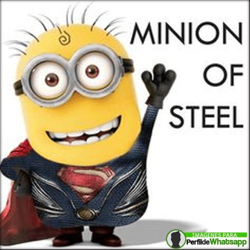 Minioms Superman